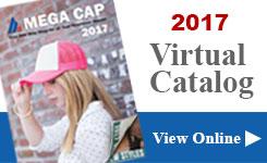 Virtual Catalog 2017