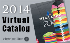 Virtual Catalogs 2014