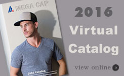 Virtual Catalogs 2016